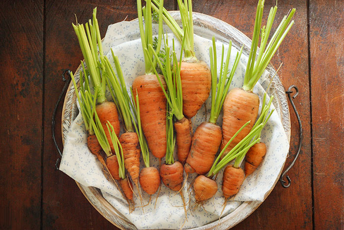 Roasted Carrot Mash with Tarragon | SoupAddict.com