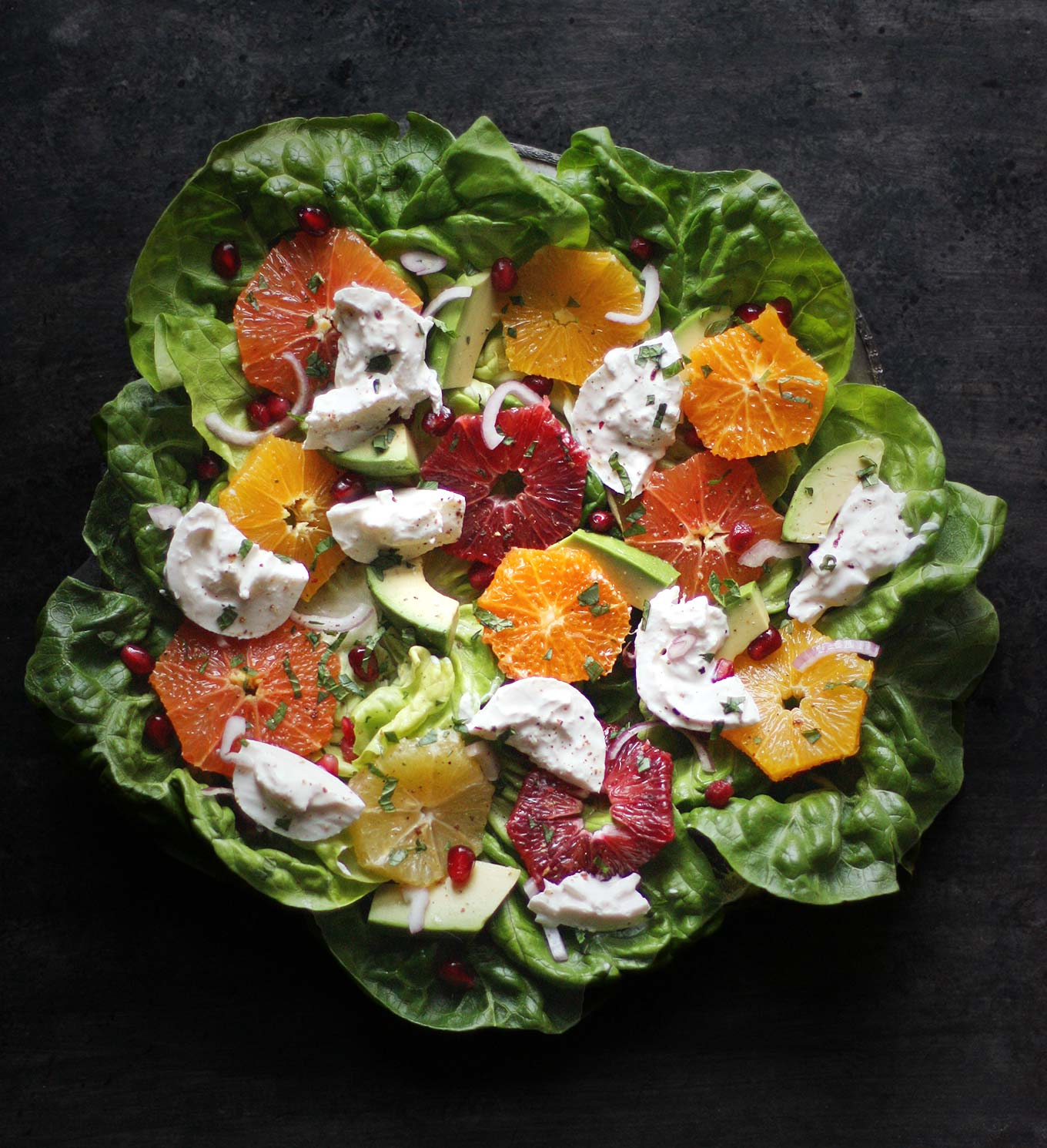 Winter Citrus Salad with Burrata | SoupAddict.com