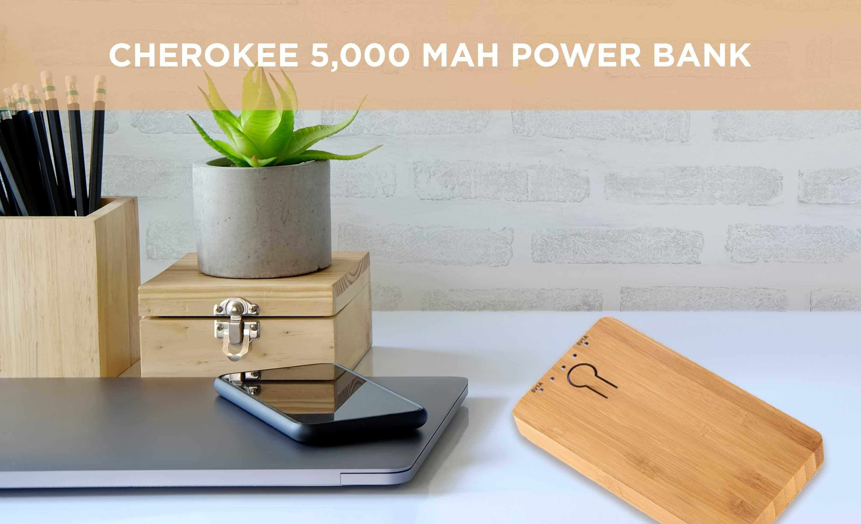 AIM cherokee power bank