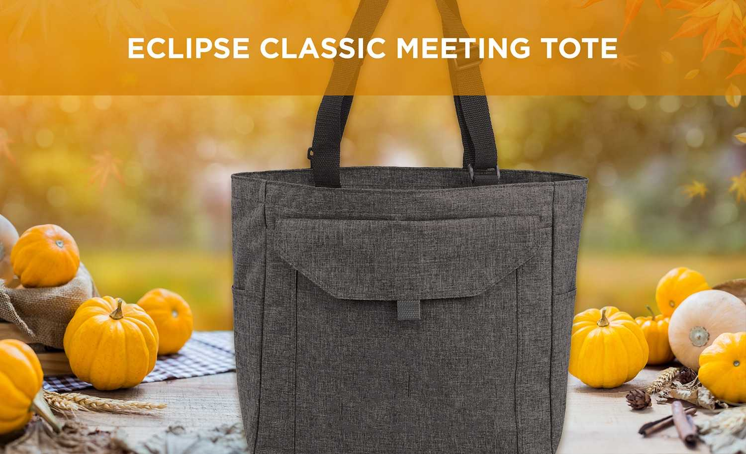 Eclipse Meeting Tote AIM