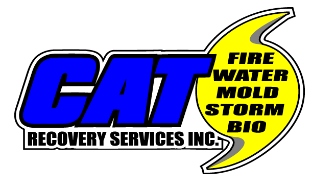 Mold Removal - CAT Recovery Services Inc.