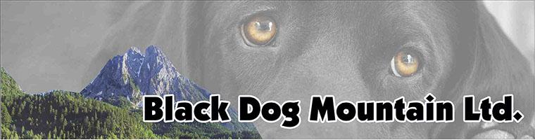 Black Dog Mountain Ltd