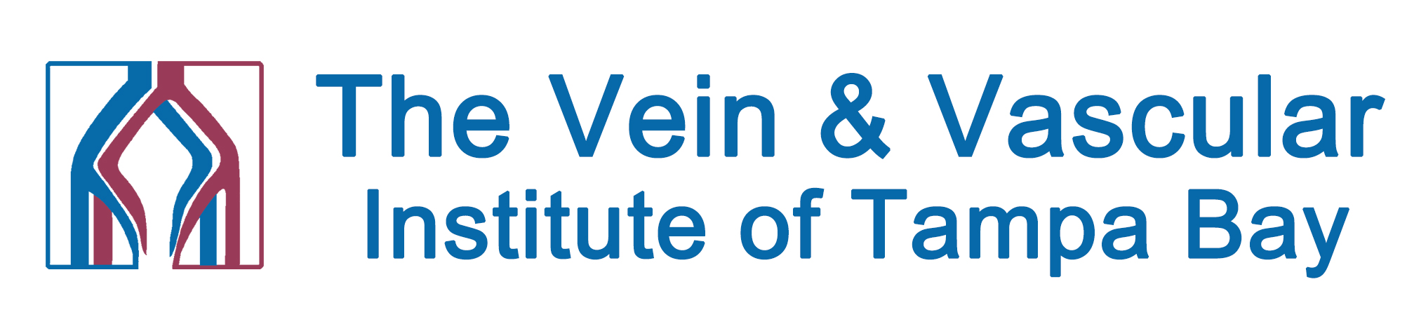 The Vein and Vascular Institute of Tampa Bay