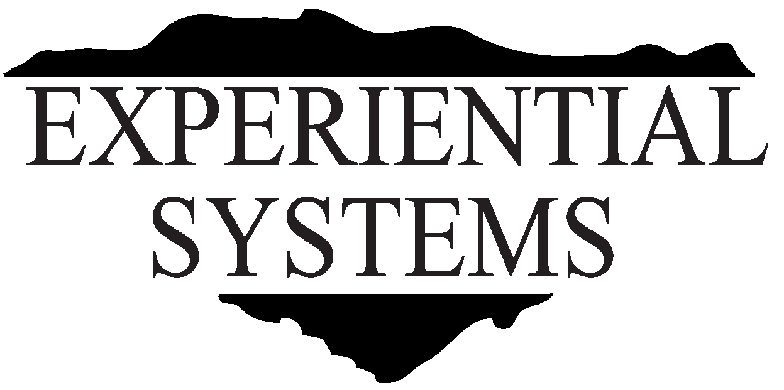 Experiential Systems