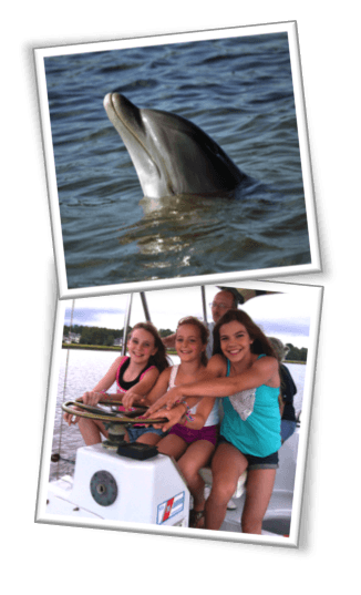 Dolphin & Nature Tour