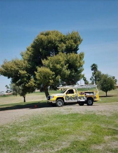 Image 4 | Beebe's Pest Termite & Bee Service
