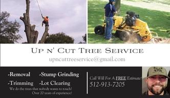 Up n' Cut Tree Service