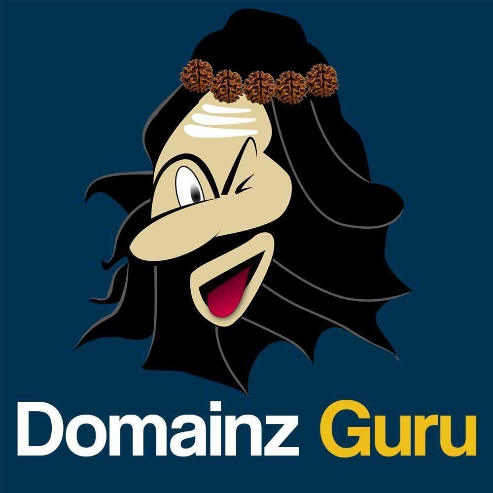 Domainz Guru LLC