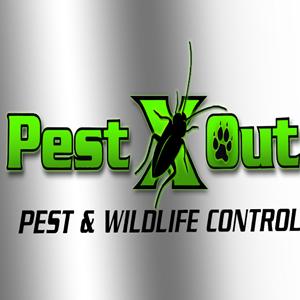 Pest X Out Pest & Wildlife Control LLC