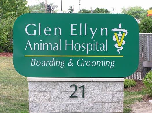 Image 4 | Glen Ellyn Animal Hospital