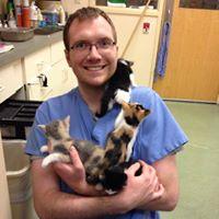 Image 3 | Glen Ellyn Animal Hospital