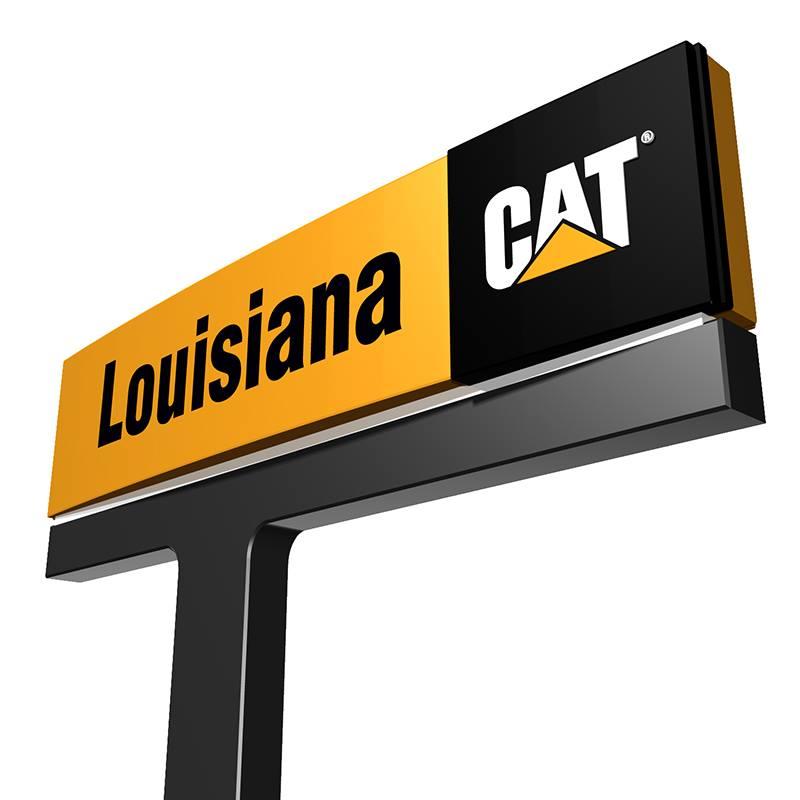 Louisiana Cat - Alexandria