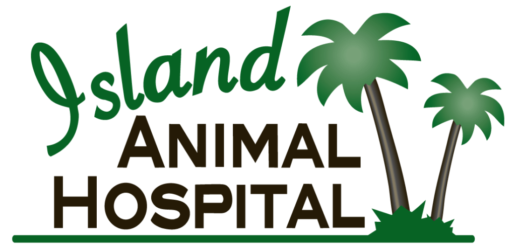 Image 1 | Island Animal Hospital in Merritt Island