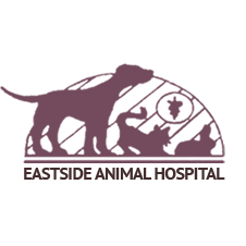 Image 1 | Eastside Animal Hospital