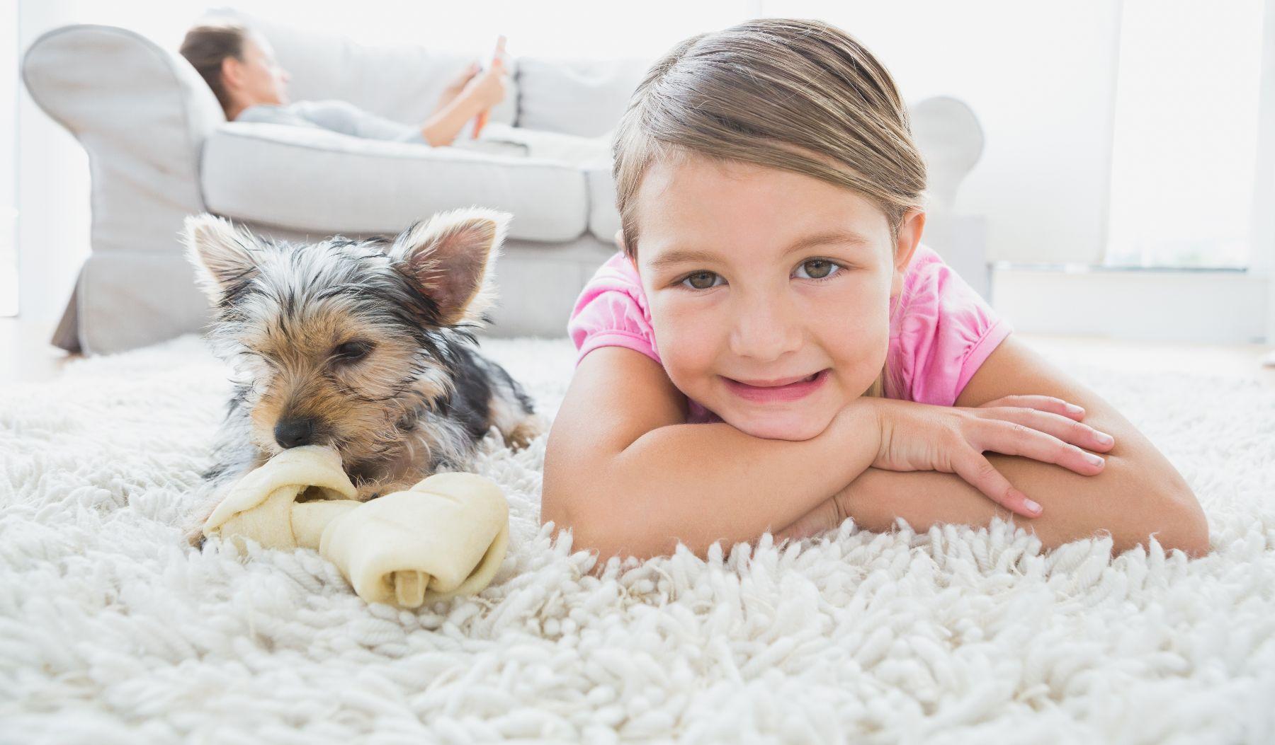 Image 2 | ZeroRez Houston Carpet Cleaning