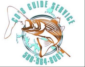CD's Guide Service