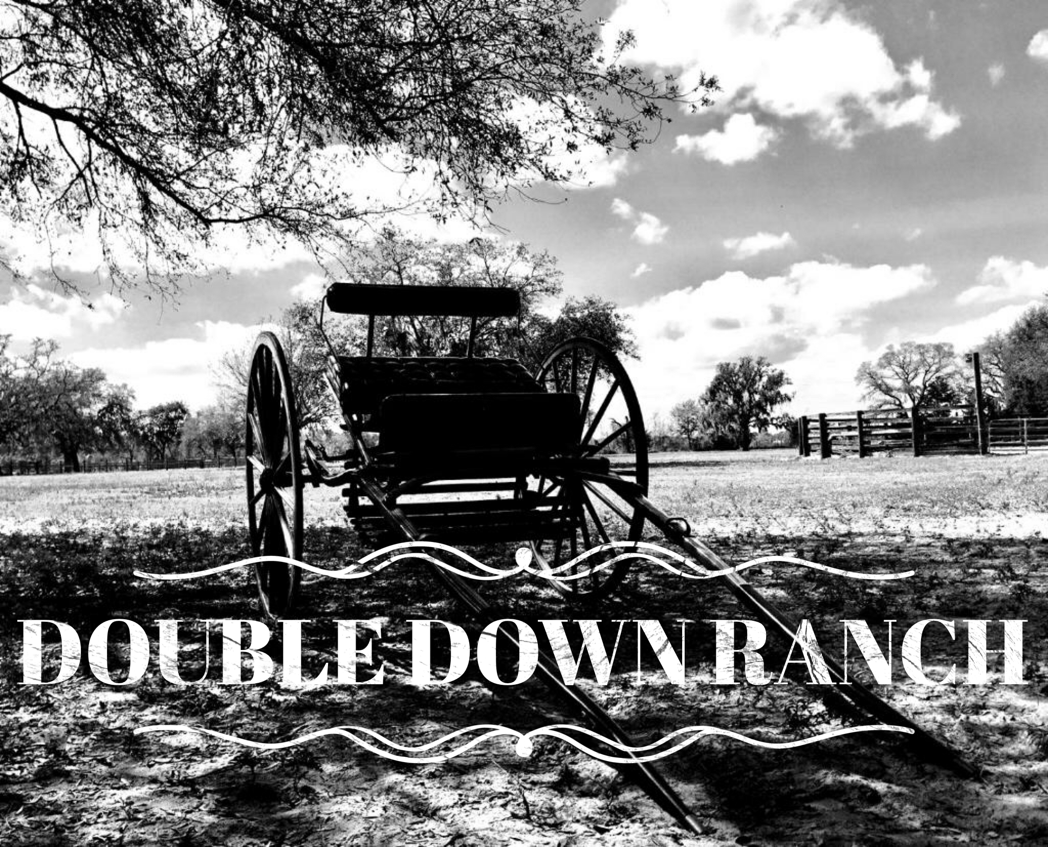 Double Down Ranch