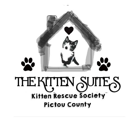 The Kitten Suites Kitten Rescue Society Pictou County