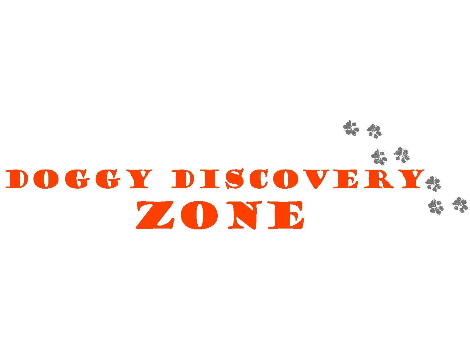 Doggy Discovery Zone