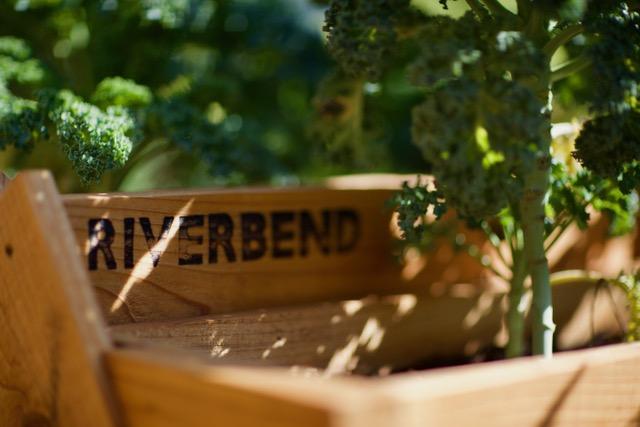 Riverbend Planters