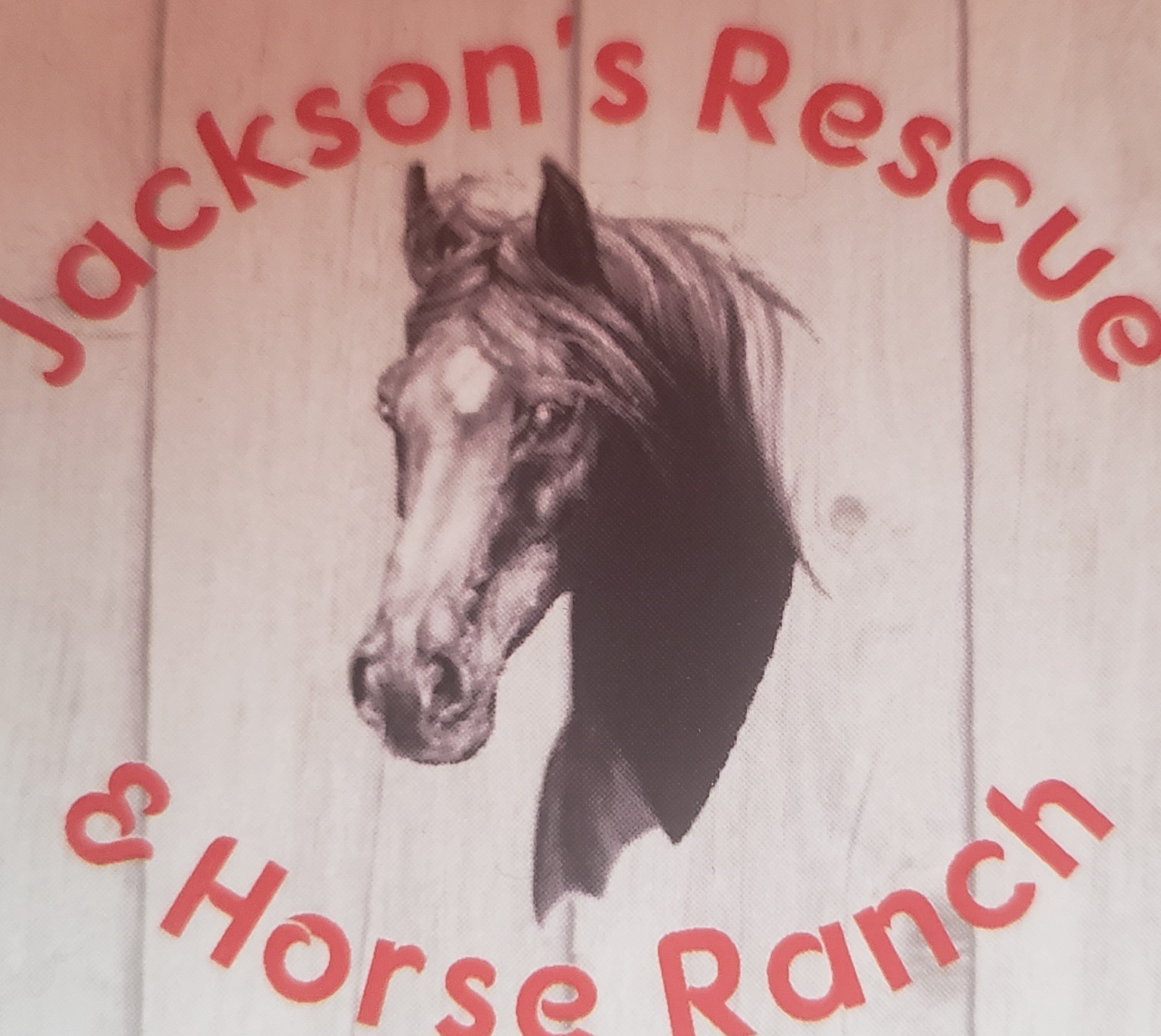Jackson's Rescue and Horse Ranch