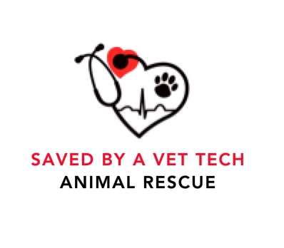 SAVED BY A VET TECH RESCUE INC