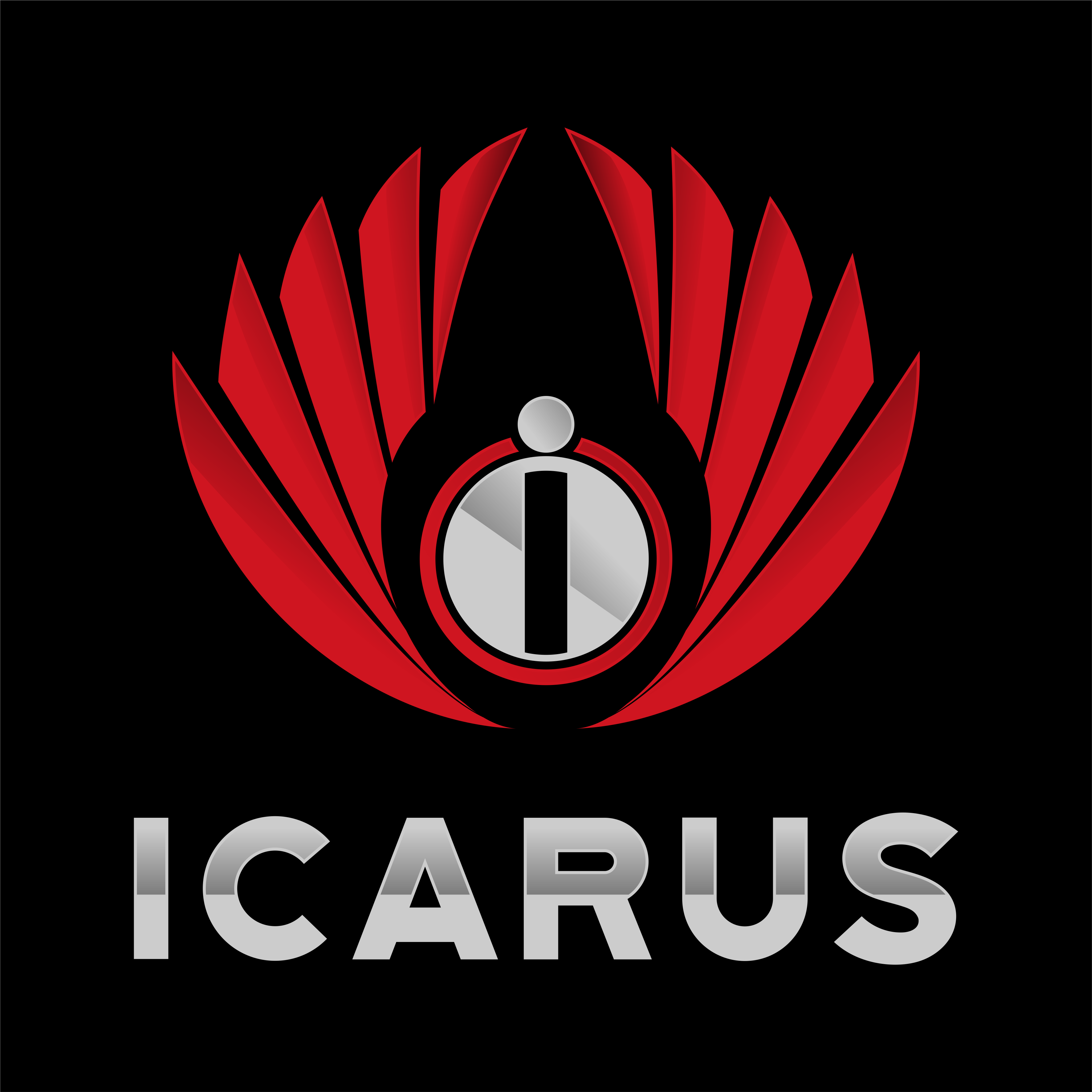 Icarus Consulting