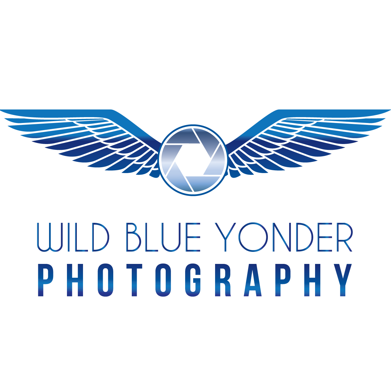Wild Blue Yonder Photography