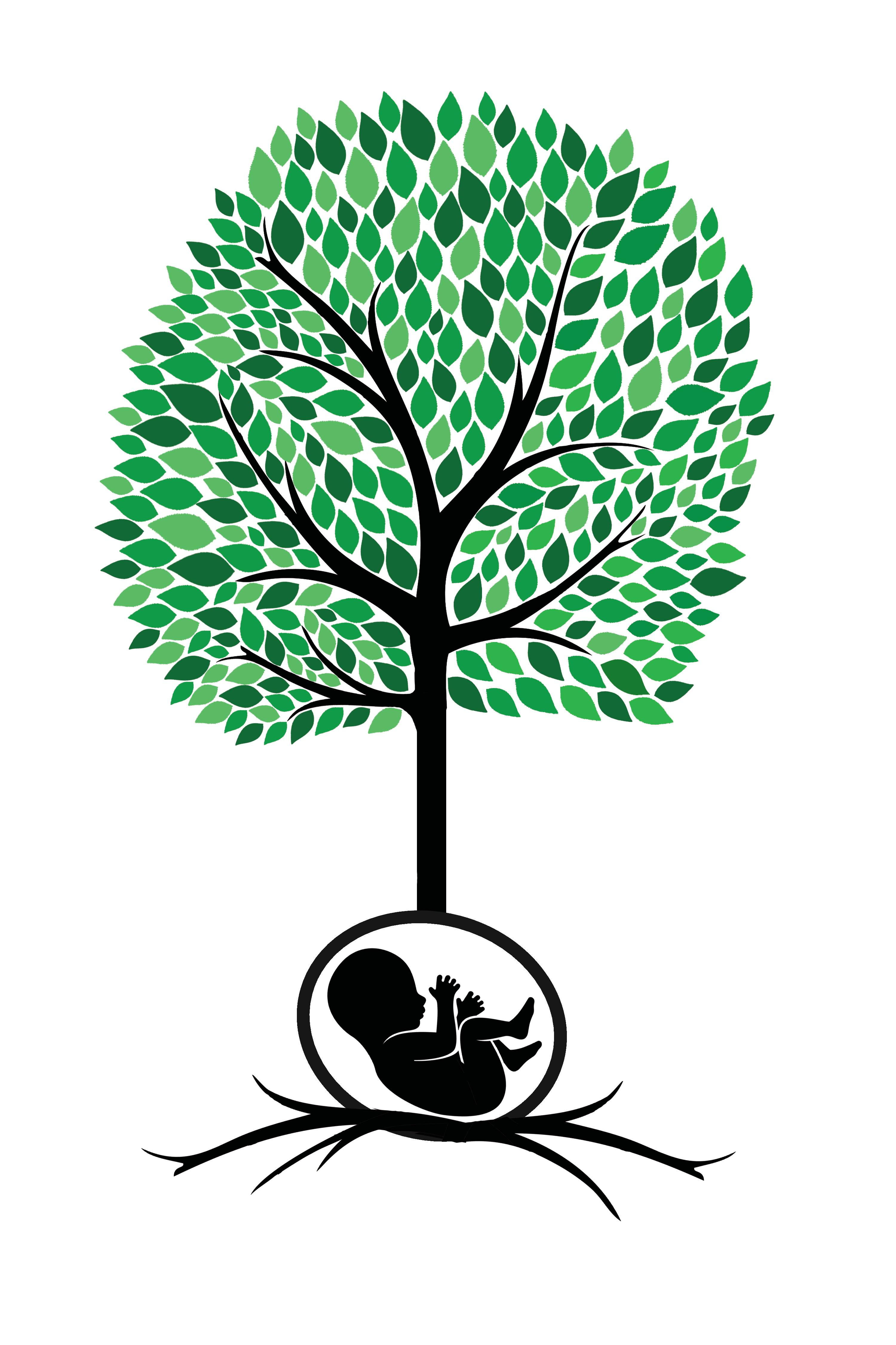 Birthroot Doula Services