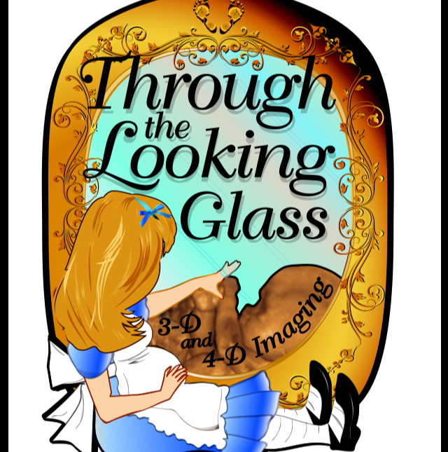 Through the Looking Glass LLC