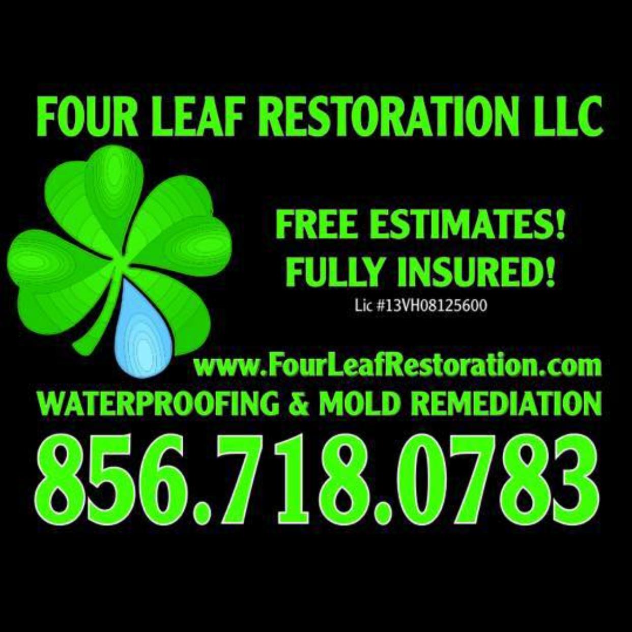Four Leaf Restoration Basement/Crawlspace Waterproofing & Mold Remediation