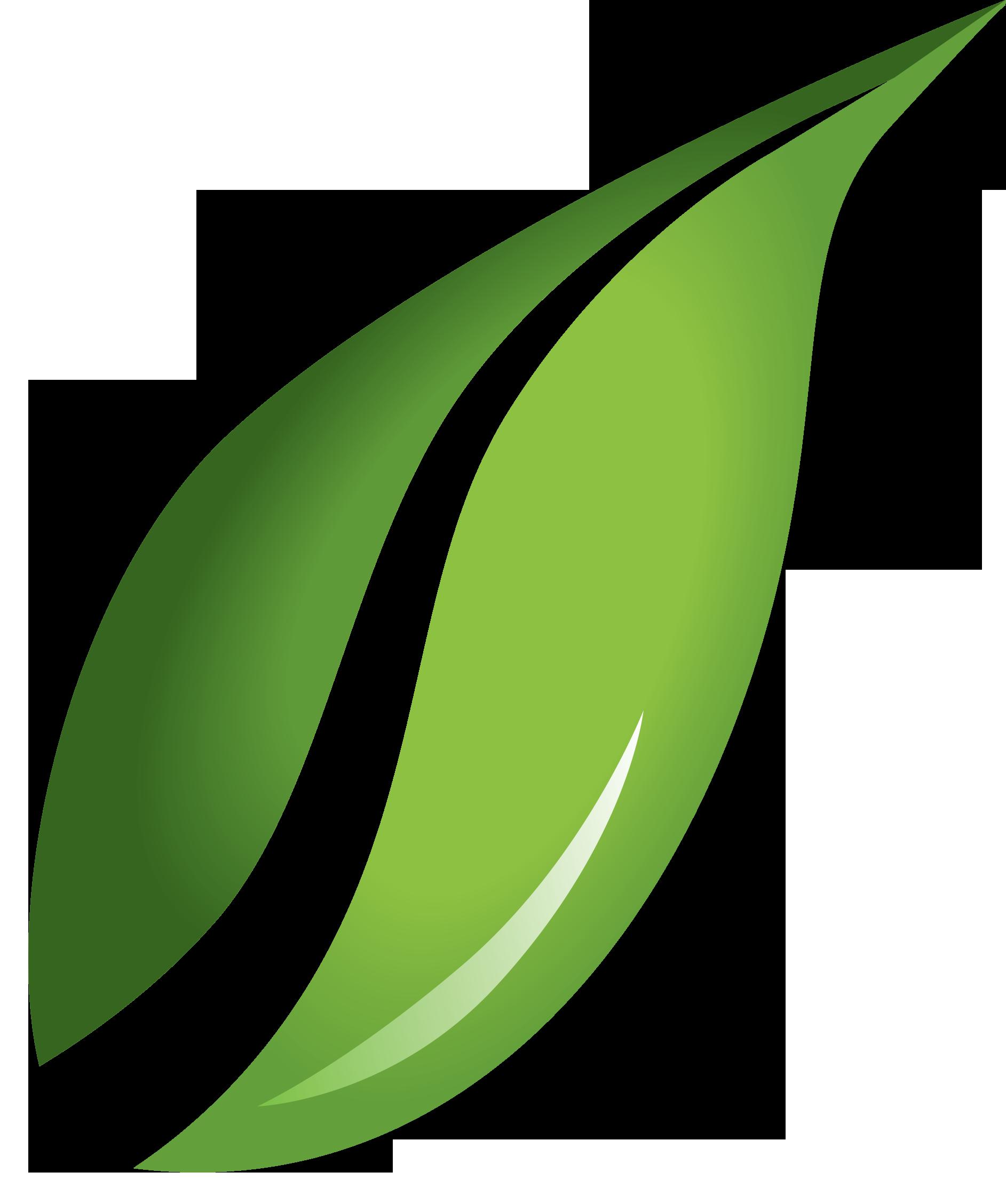 Eco-Lawn Management