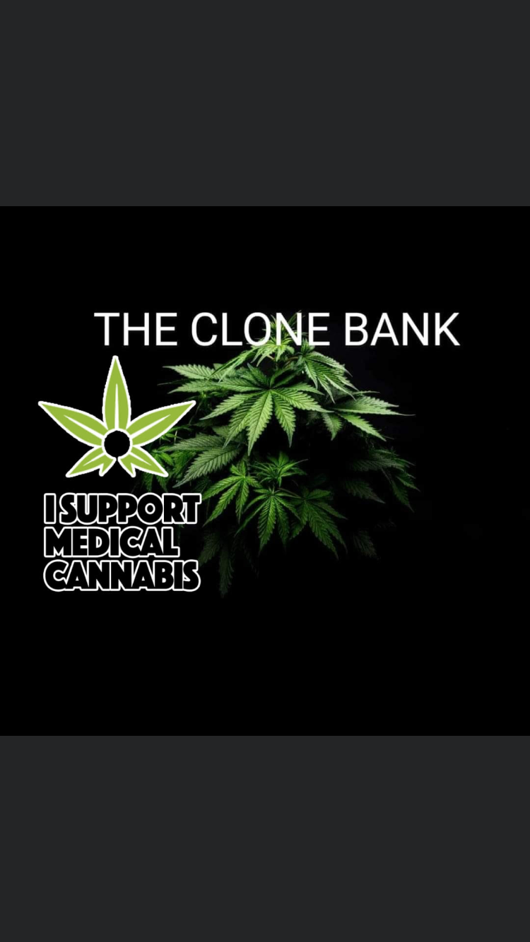 THE CLONE BANK