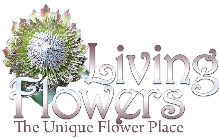 Living Flowers Inc