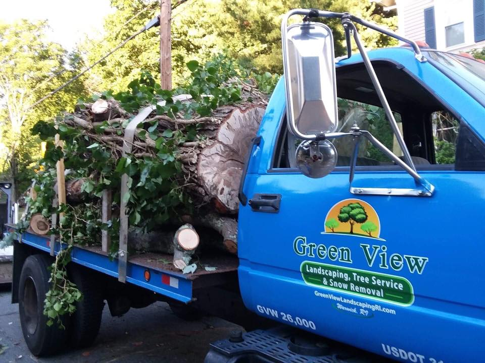 Green View Tree Service