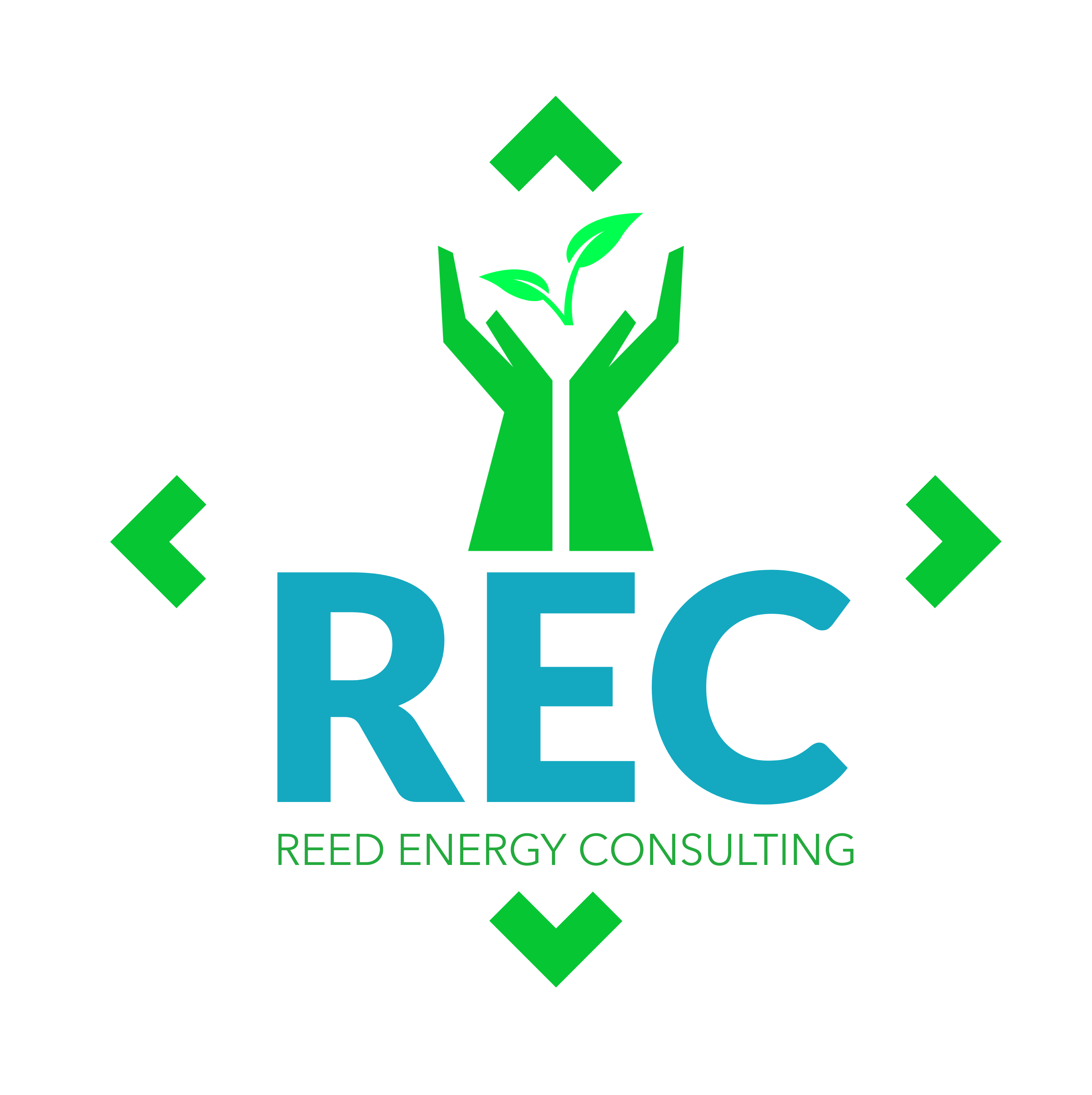 Reed Energy Consulting