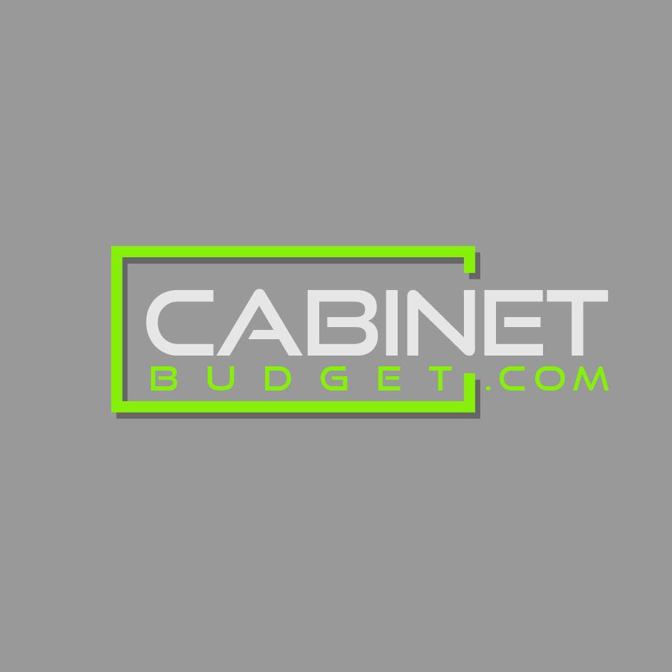 CABINET BUDGET