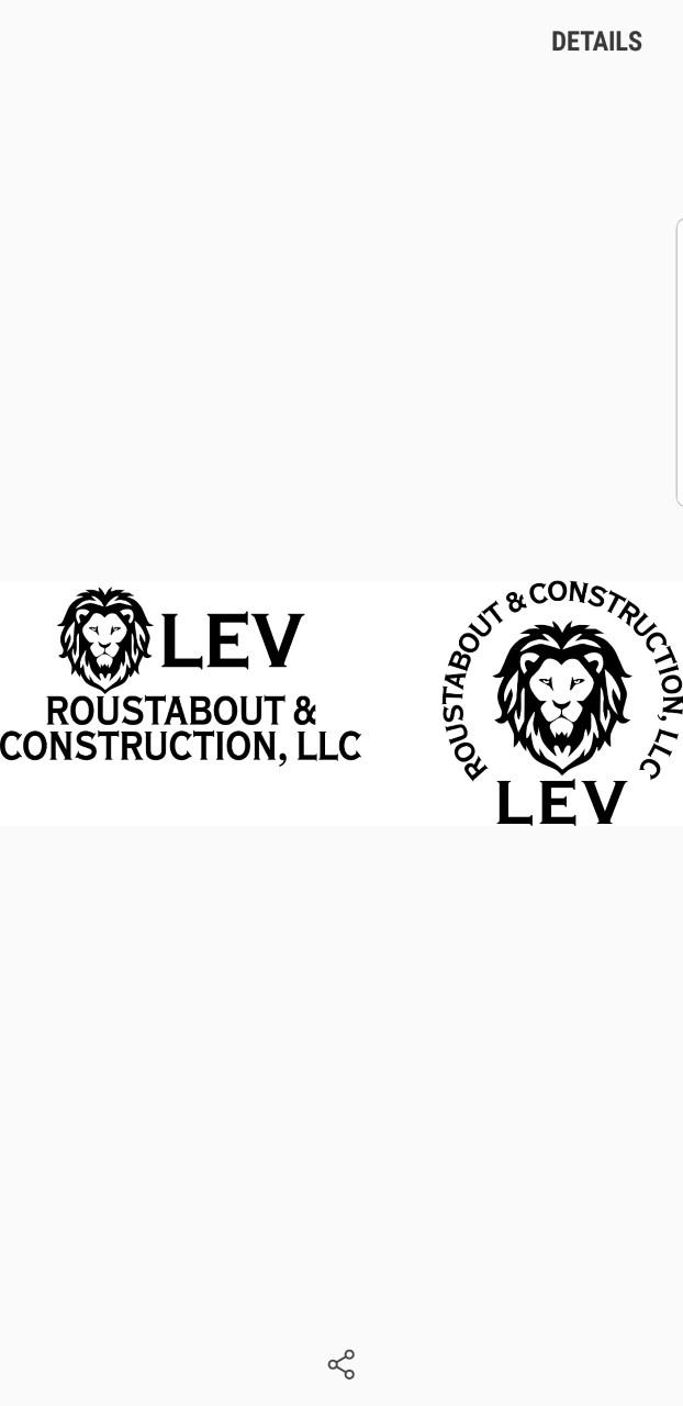 LEV ROUSTABOUT & CONSTRUCTIONLLC