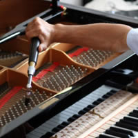 Paul Millar Piano Tuning and Repair