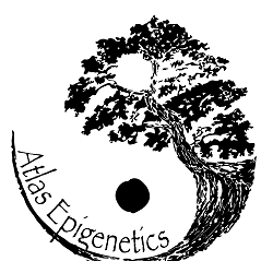 Atlas Epigenetics