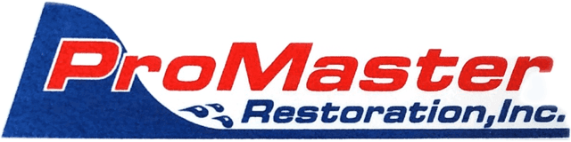 Carpet Cleaning Tampa - ProMaster Restoration & Carpet