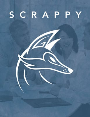 Scrappy-400
