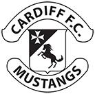Cardiff FC image
