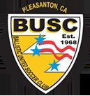 Ballistic Soccer Club image