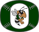 Ostingers Baseball Academy image