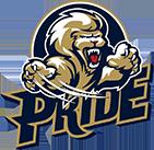 ProSwing Pride image