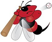NY Swarm Bee image