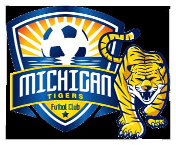 Michigan Tigers image