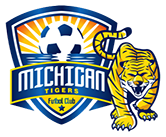 Michigan Tigers image