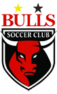 Bulls SC image